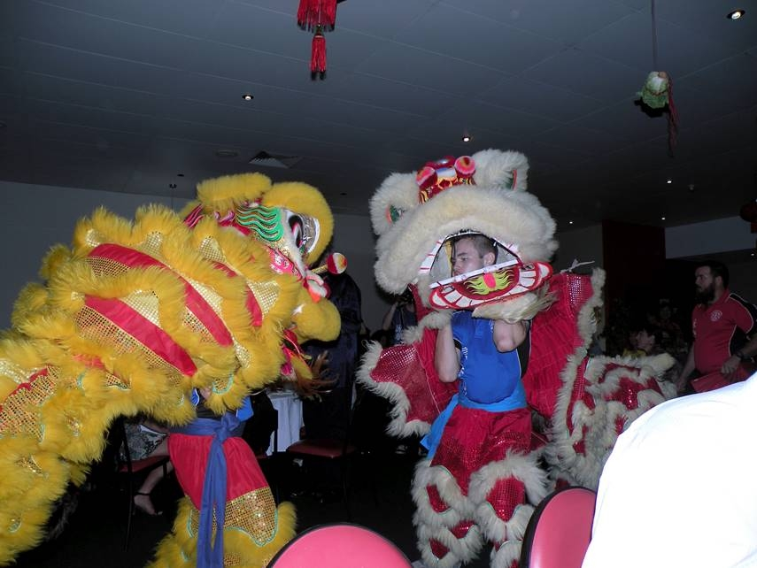Lions Performing